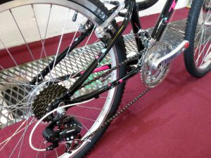 2015trek_mt220_girl's